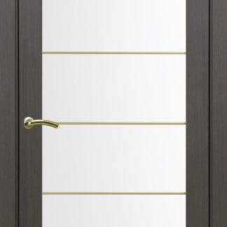 Фото Дверное полотно Турин 501 АСС с молдингом SG Цвет венге
